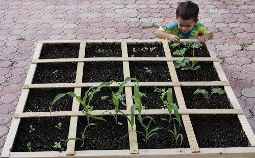 jardin_carre_ideal_pour_enfant